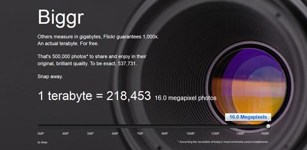 Flickers Biggr Campaign